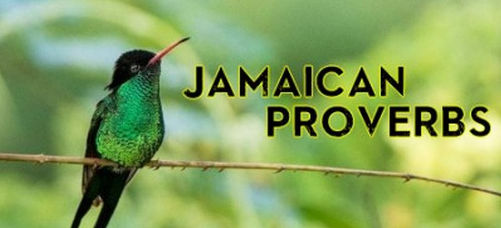 Jamaican Proverbs The Jamaican Blogs