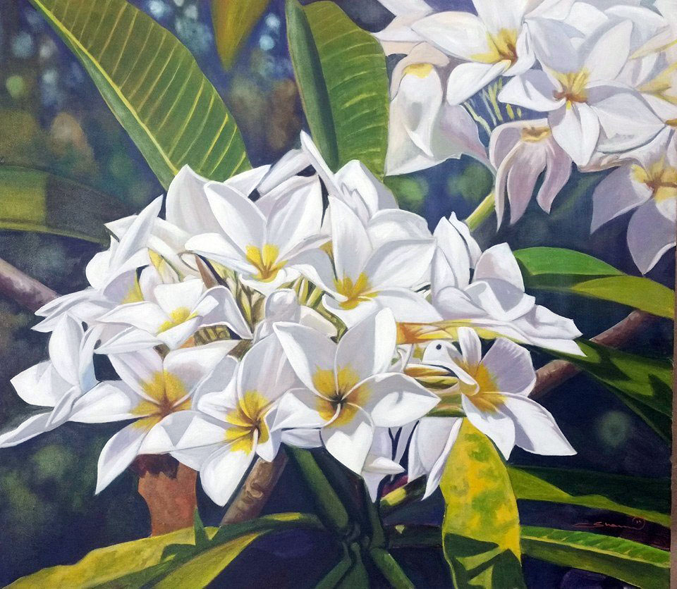 White Frangipanis by Shaun Reid – CLICK to Enlarge